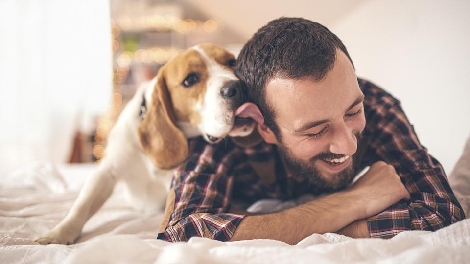 hund leckt gesicht ab wie gesund ist diese tierische begr ung. Black Bedroom Furniture Sets. Home Design Ideas