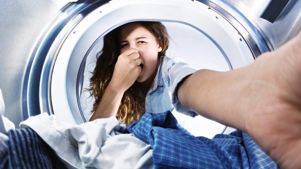 Warum Stinkt Waschmaschine schwarze wäsche stinkt nach dem waschen das ist der grund