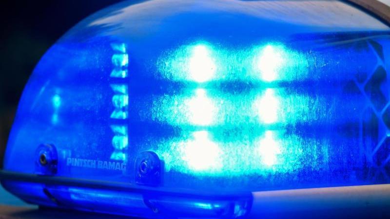Schock in der Manege Zirkus-Artistin in Essen abgestürzt