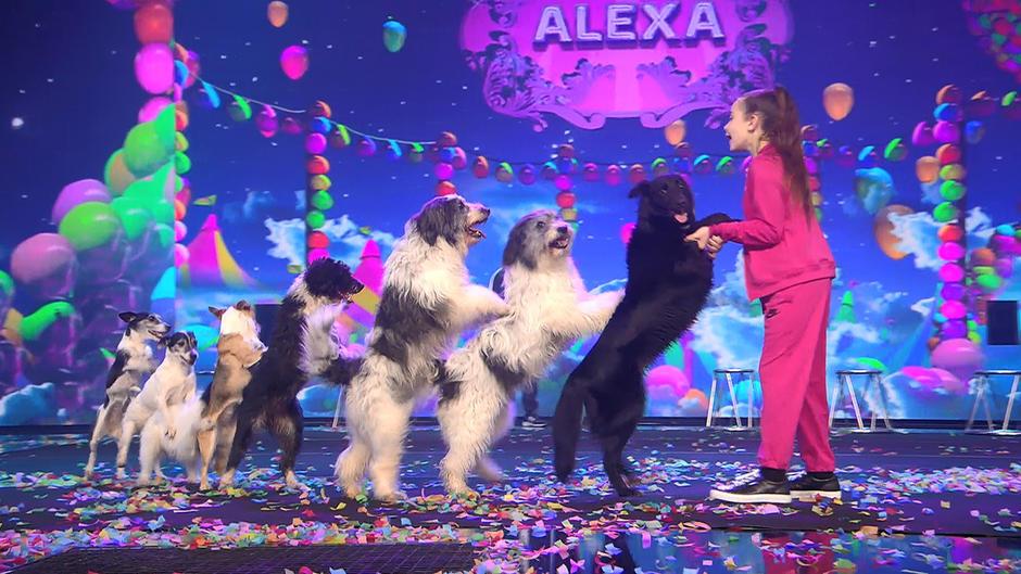 Alexa Lauenburger und ihre Hunde erobern die Herzen