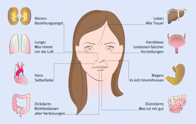 Gesichtsmerkmale Bedeutung