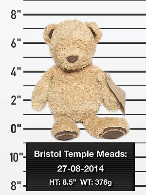 Teddys Wanted