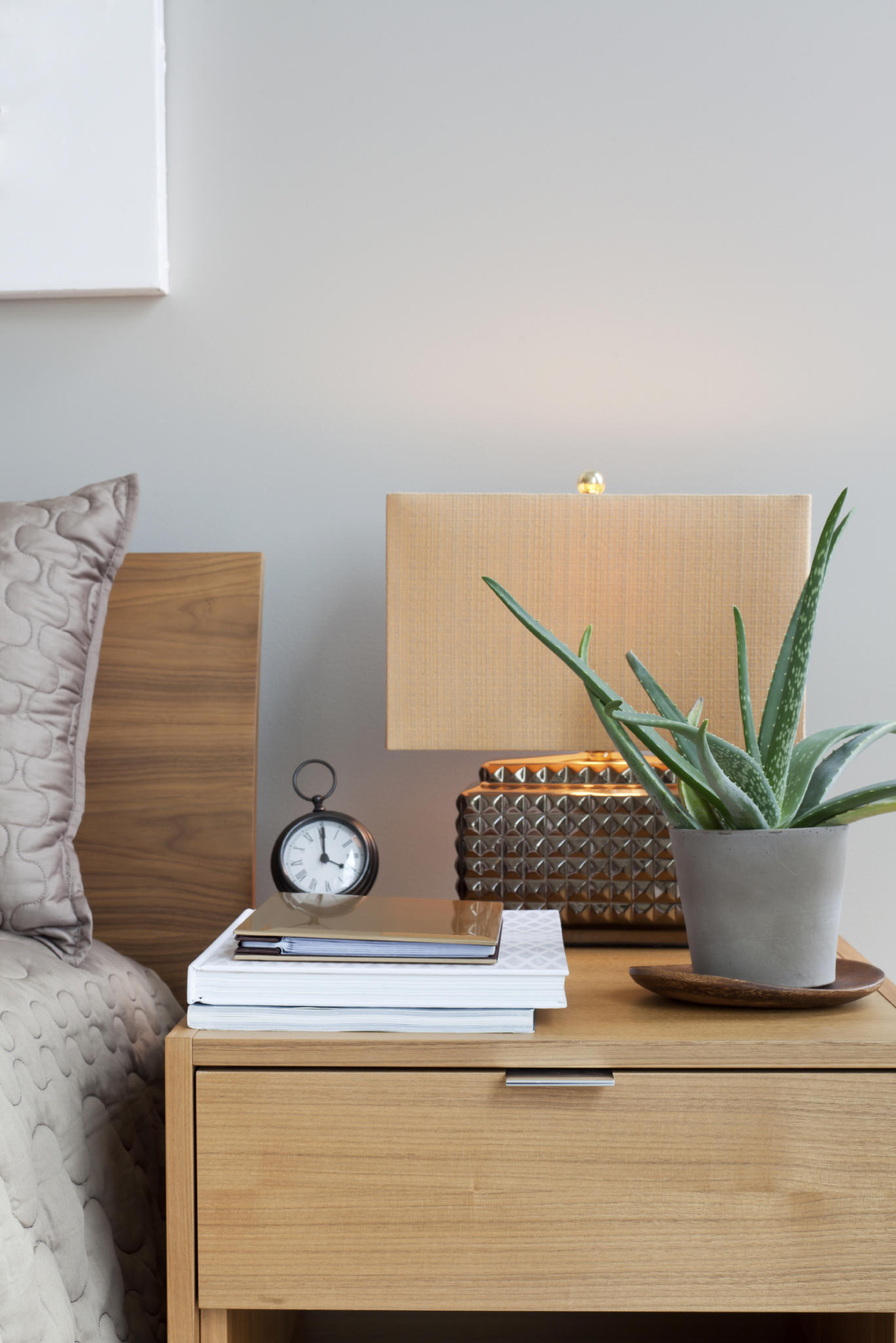 mit diesen zimmerpflanzen schlafen sie richtig gut. Black Bedroom Furniture Sets. Home Design Ideas