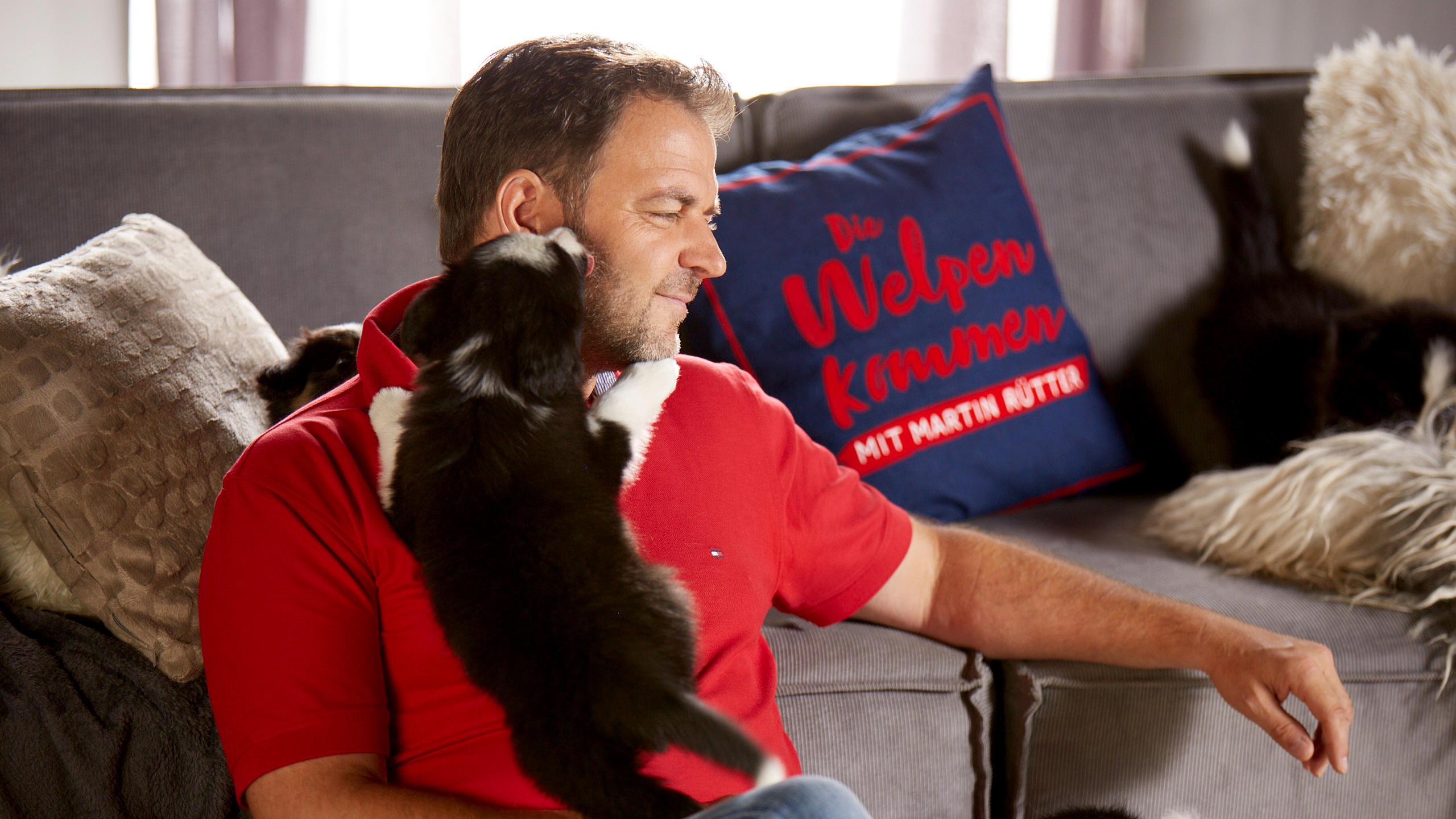 die welpen kommen mit martin r tter ach wie s hundeprofi hilft familien bei der. Black Bedroom Furniture Sets. Home Design Ideas