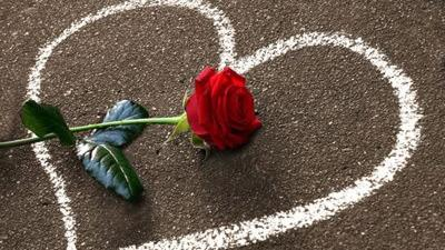 Valentinstag Geschenk Für Geliebte Ist Teurer