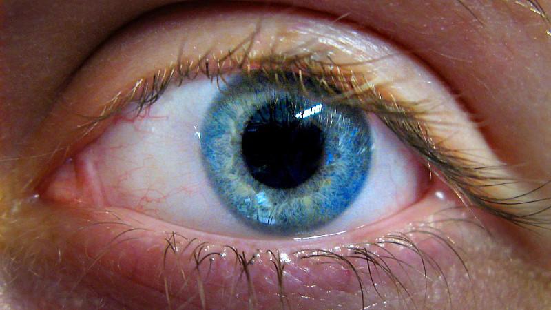 Eye colors for wm head 46 tan skin sex doll 4