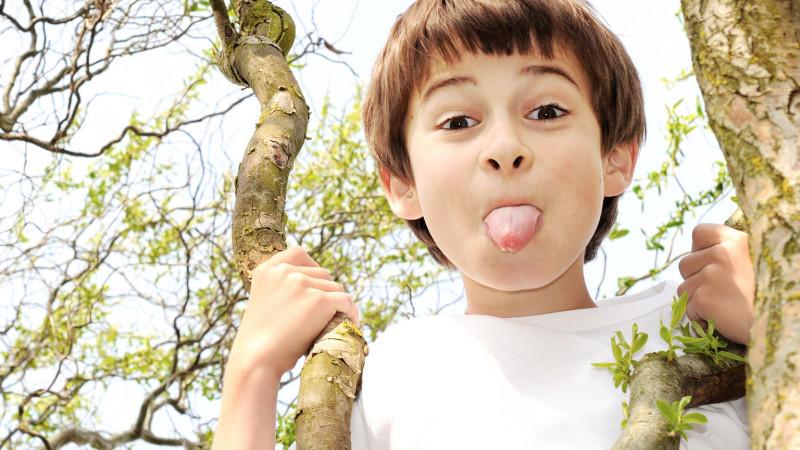 mädchen oder junge bei wem fällt die erziehung leichter