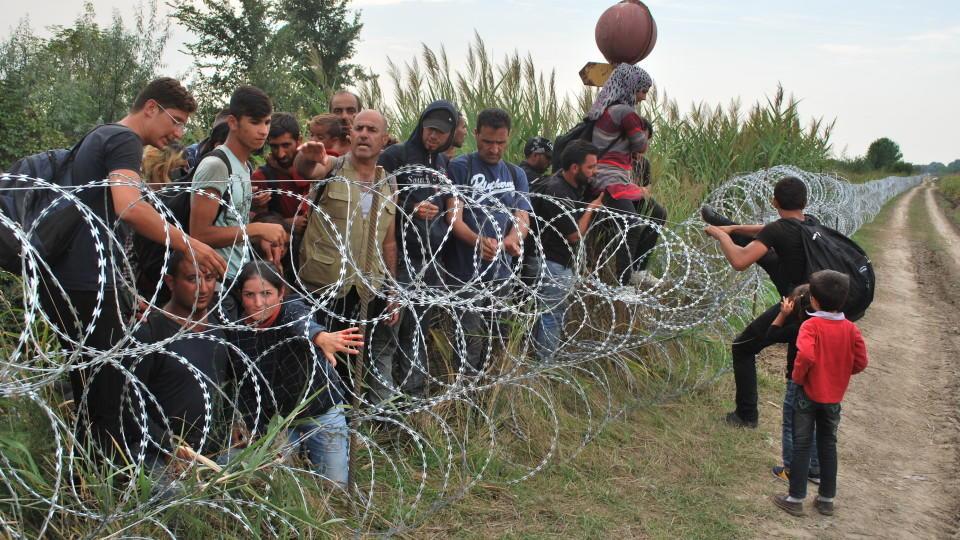 keine grenzen keine zäune