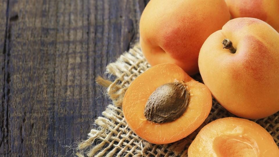 trocken früchte im test