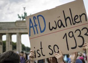 AfD: Demonstrationen in Berlin