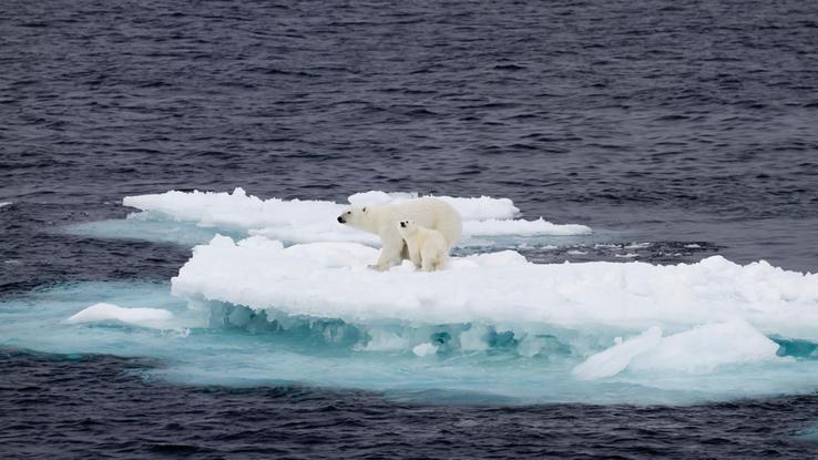 Bilder Klimawandel