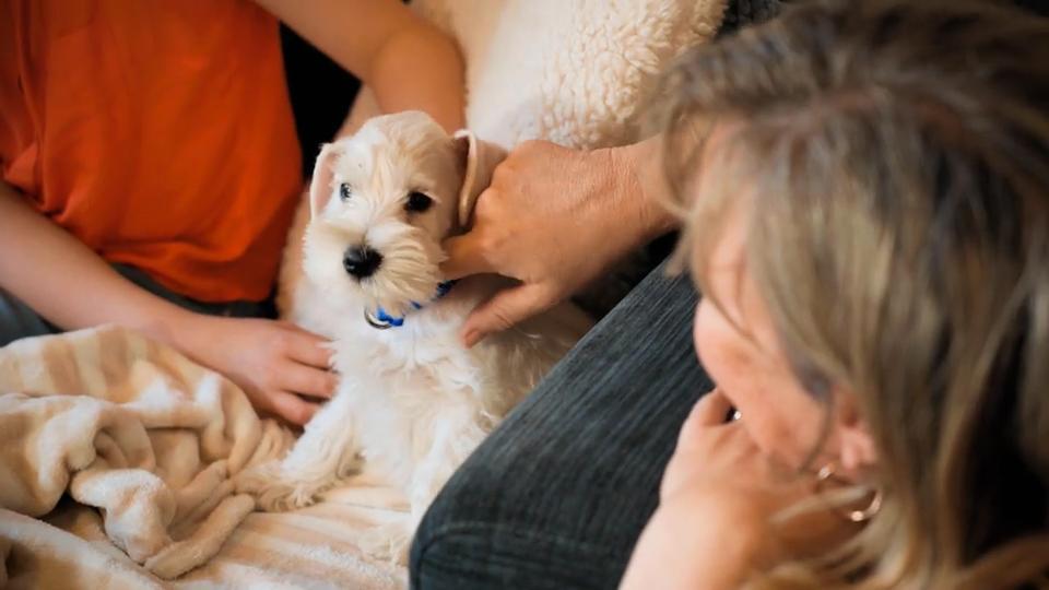 Die Familie Mit 5 Kindern Ist Begeistert Alfie Kommt In Sein Neues Zuhause Rtl De