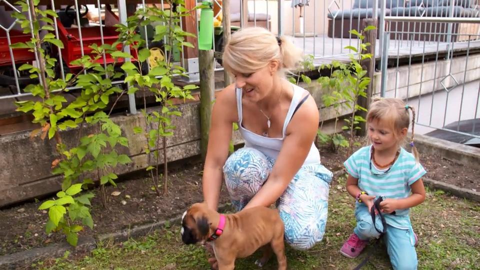 Deutscher Boxer Welpe Die Ganze Familie Freut Sich Auf Neuzugang Mogli Rtl De